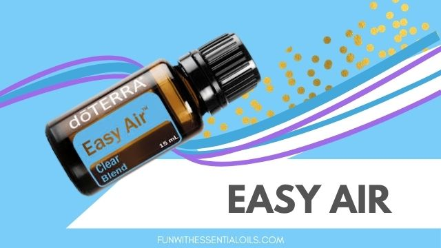 Easy Air main picture